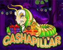 Cashapillar IW