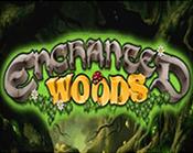 Enchanted Woods